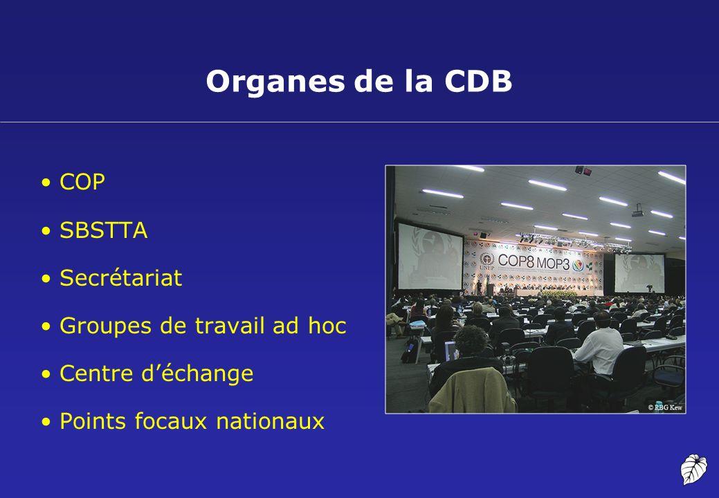 Fonctionnement de la CDB 15