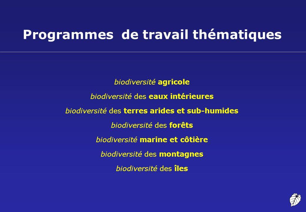 Programmes de travail thématiques
