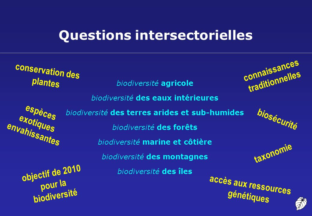 Questions intersectorielles