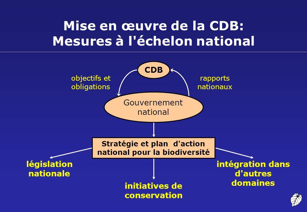 Mise en œuvre de la CDB: Mesures à l échelon national
