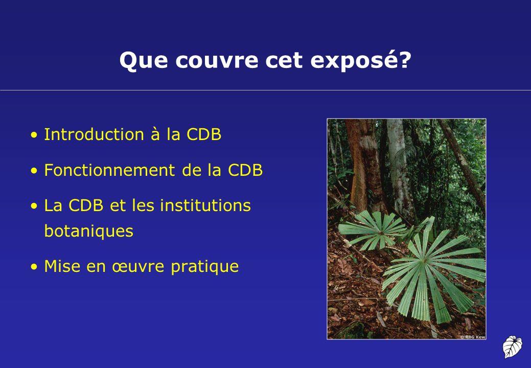 Que couvre cet exposé Introduction à la CDB Fonctionnement de la CDB