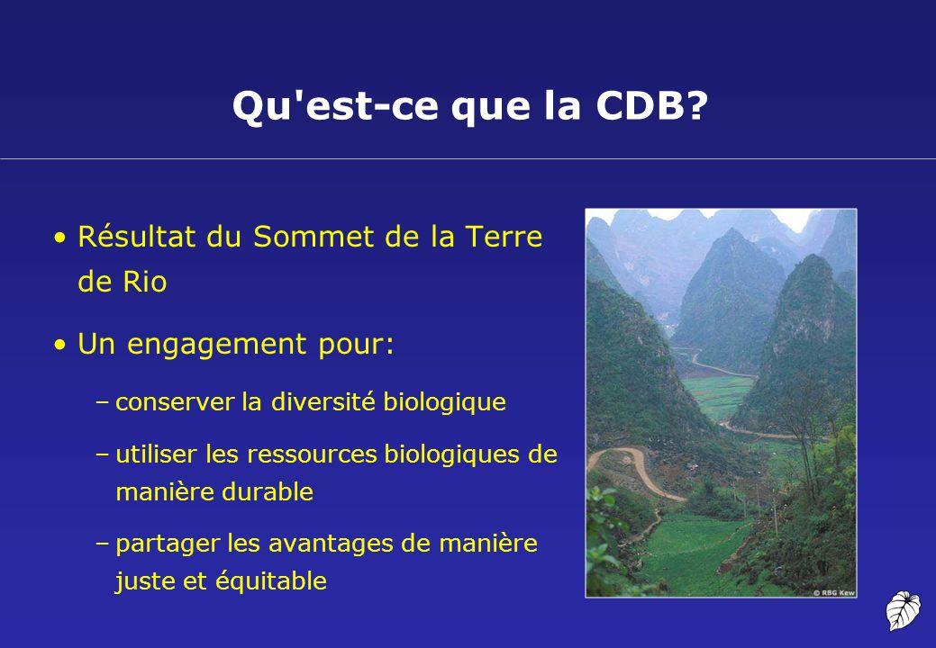 Qu est-ce que la CDB Résultat du Sommet de la Terre de Rio