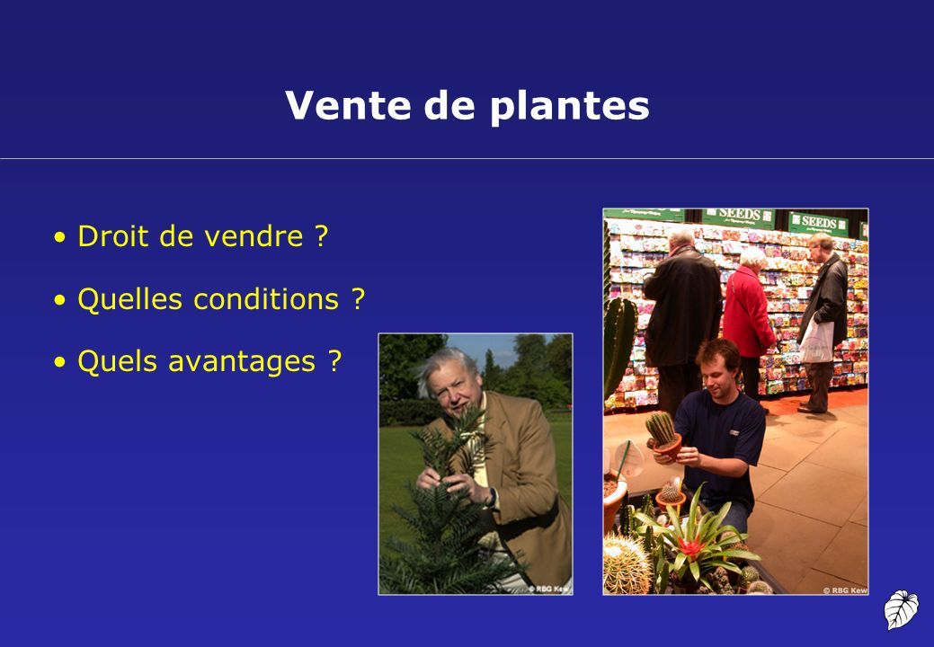 Vente de plantes Droit de vendre Quelles conditions