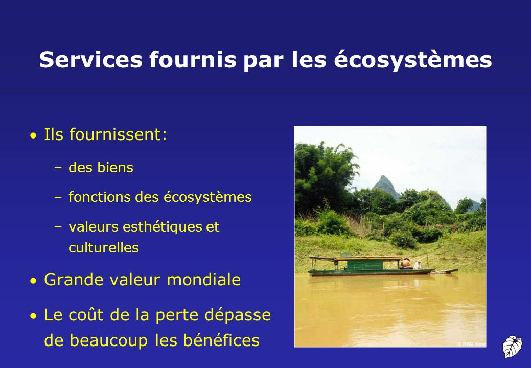 Services fournis par les écosystèmes