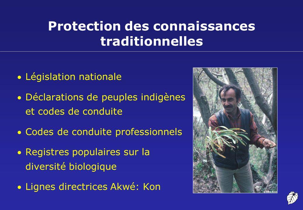 Protection des connaissances traditionnelles
