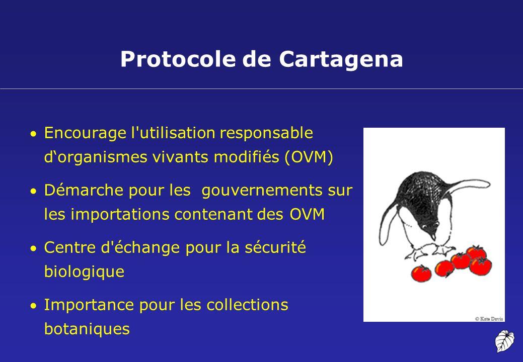 Protocole de Cartagena