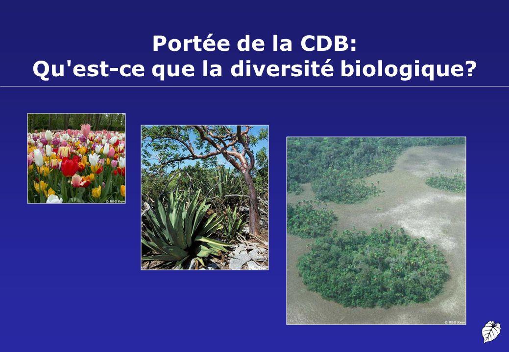 Portée de la CDB: Qu est-ce que la diversité biologique