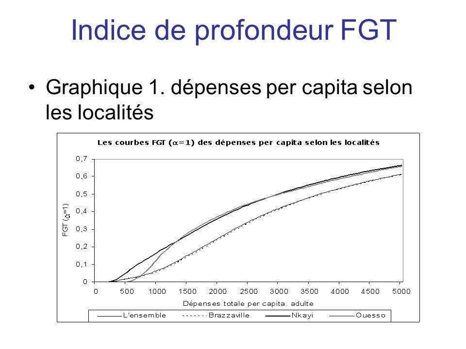 Indice de profondeur FGT