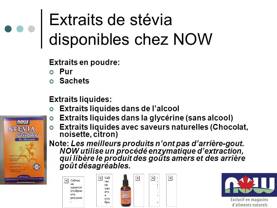 Extraits de stévia disponibles chez NOW