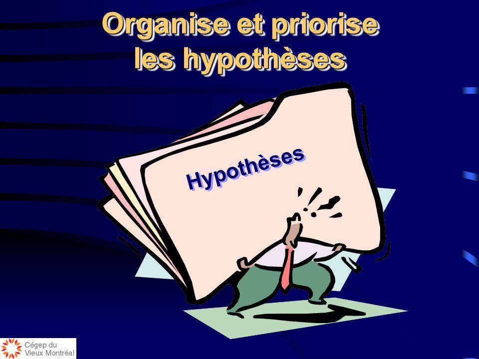Organise et priorise les hypothèses