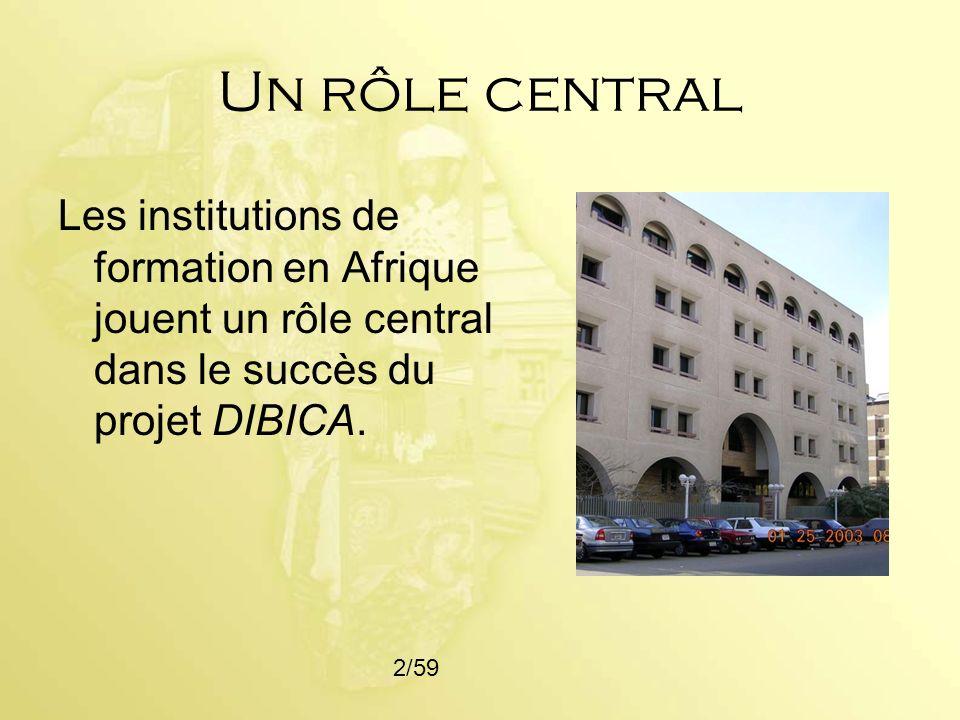 Un rôle central Les institutions de formation en Afrique jouent un rôle central dans le succès du projet DIBICA.