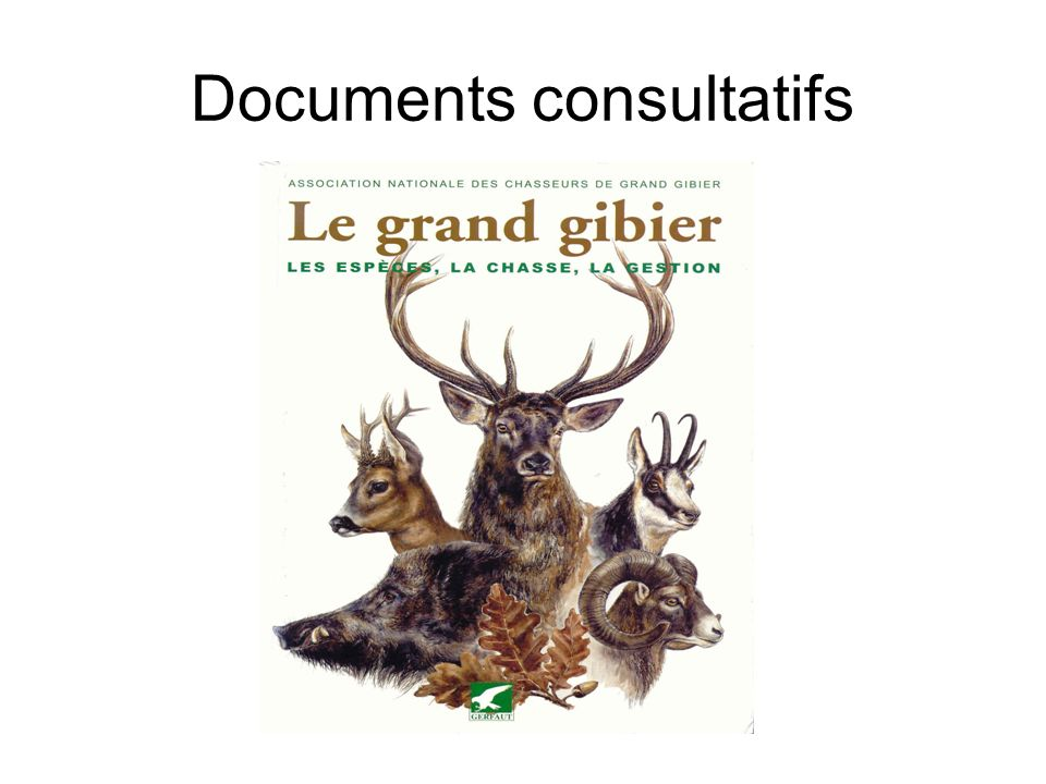 Documents consultatifs