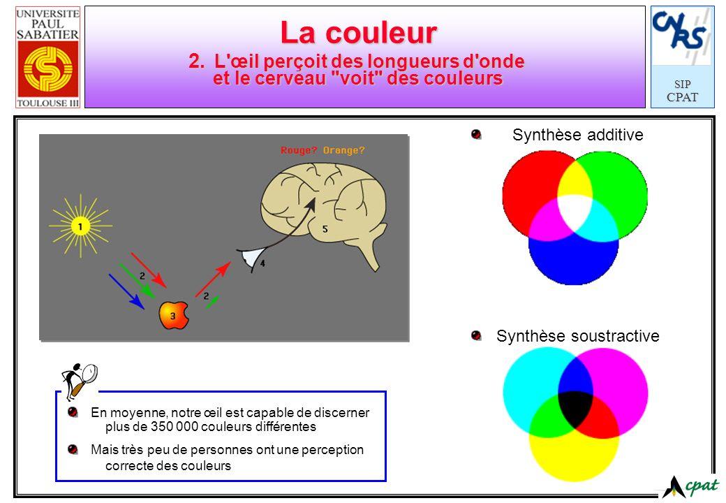 La couleur 2. L œil perçoit des longueurs d onde et le cerveau voit des couleurs