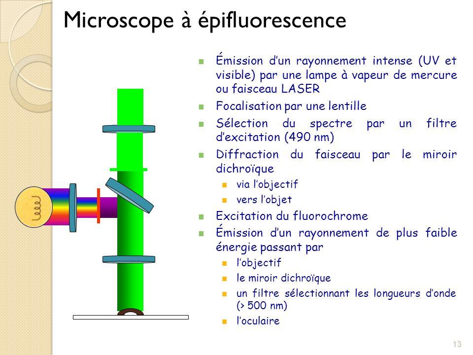 Techniques immunologiques utilisant des r actifs marqu s for Miroir dichroique