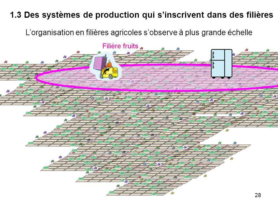 1.3 Des systèmes de production qui s'inscrivent dans des filières
