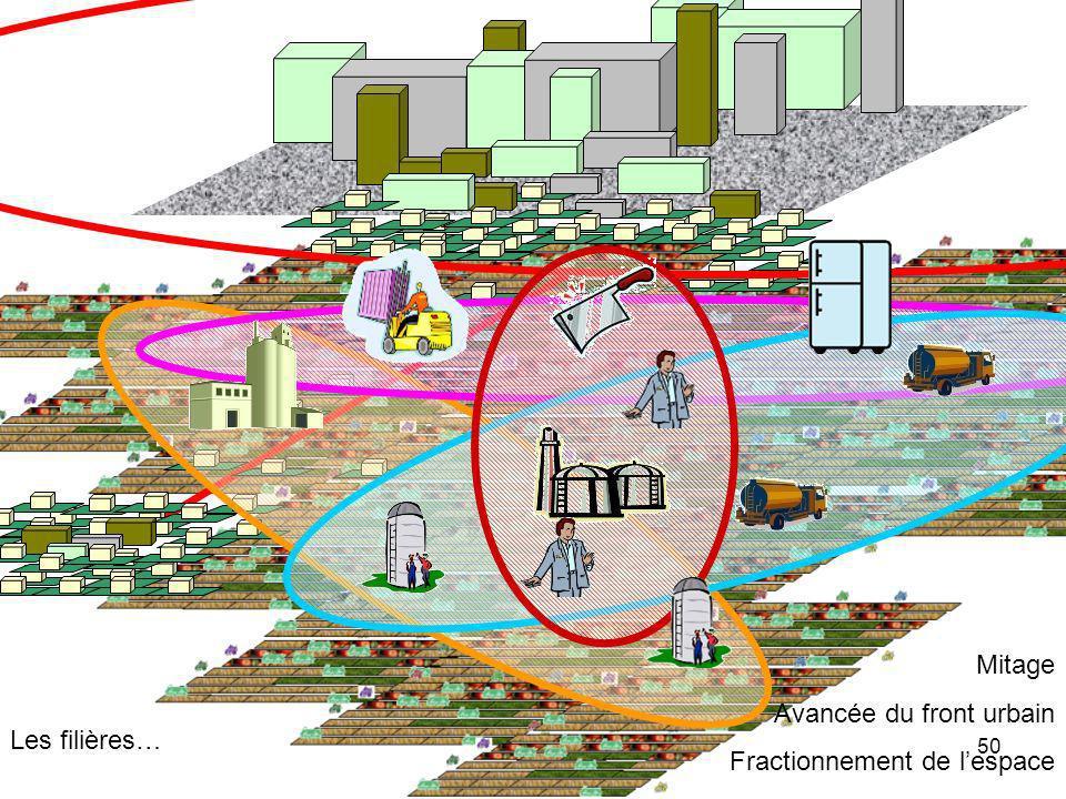Avancée du front urbain Fractionnement de l'espace Les filières…