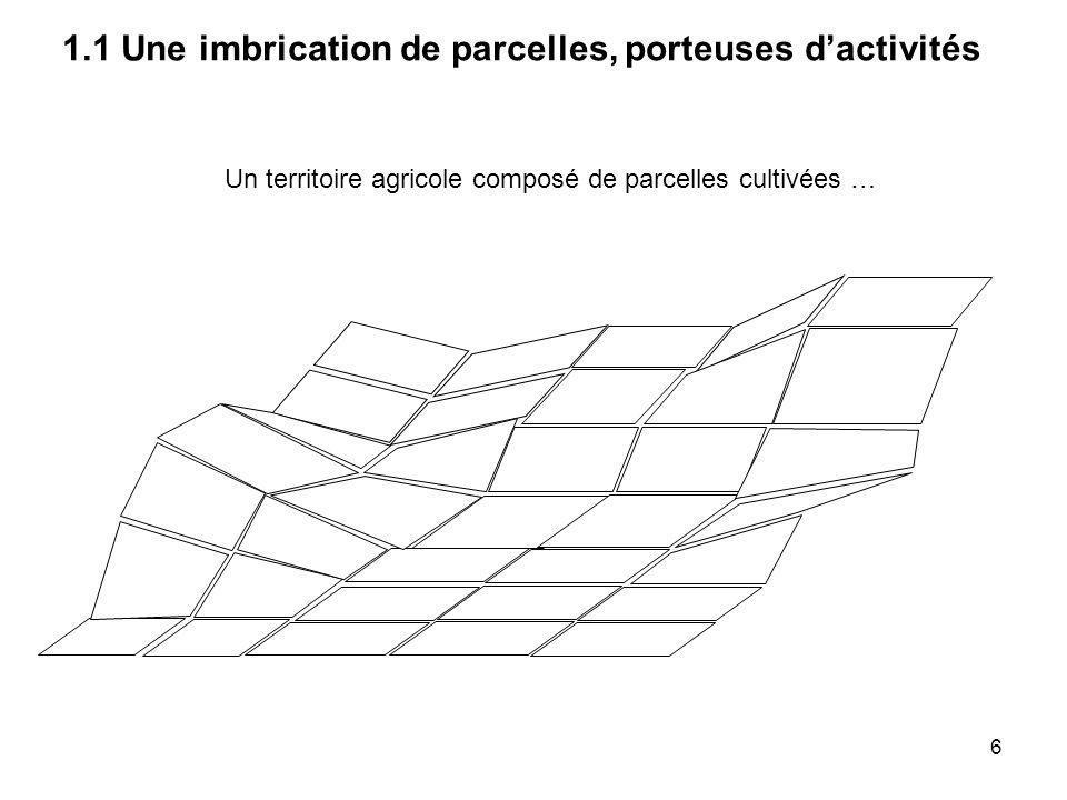 1.1 Une imbrication de parcelles, porteuses d'activités