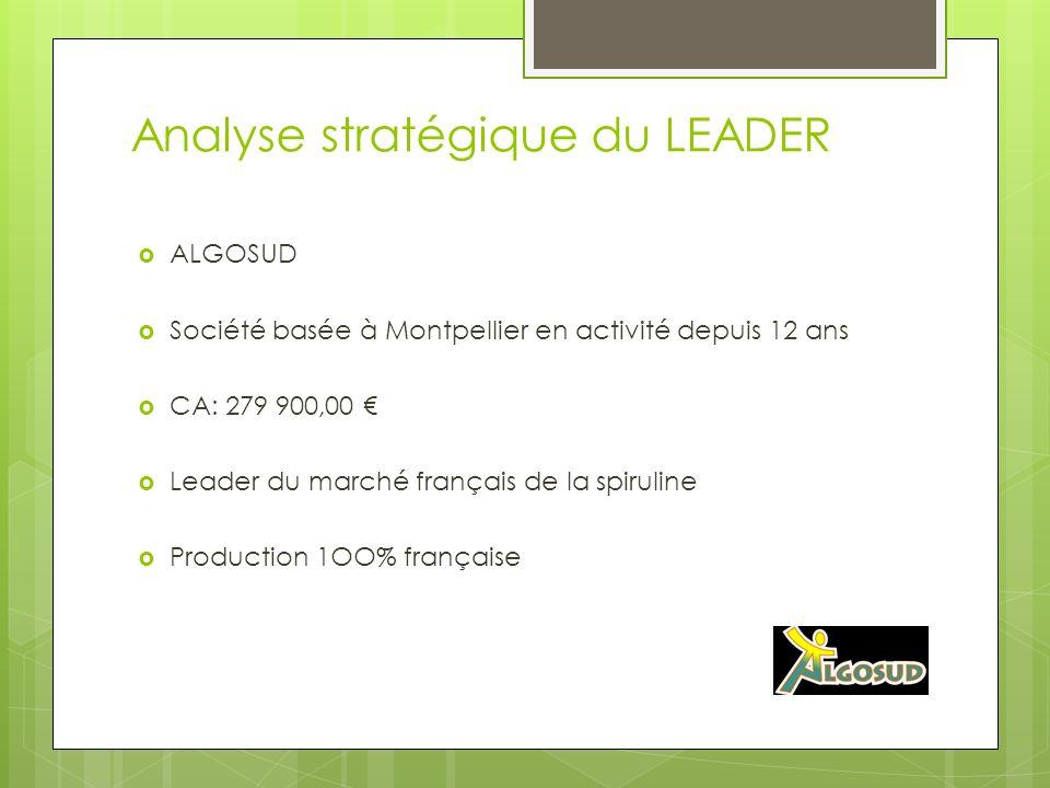 Analyse stratégique du LEADER