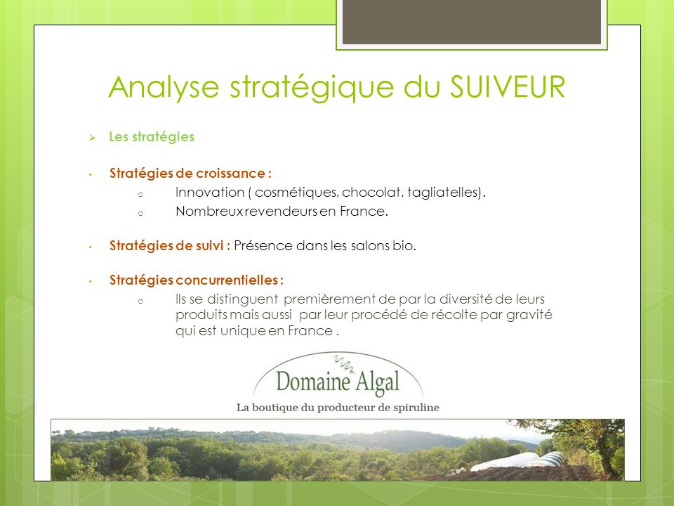 Analyse stratégique du SUIVEUR