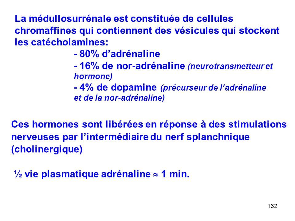 La médullosurrénale est constituée de cellules