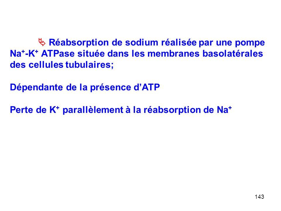  Réabsorption de sodium réalisée par une pompe