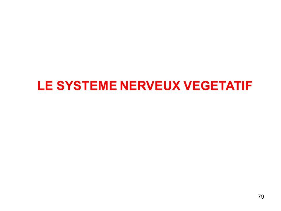 LE SYSTEME NERVEUX VEGETATIF