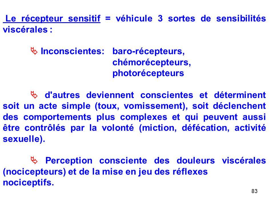Le récepteur sensitif = véhicule 3 sortes de sensibilités viscérales :