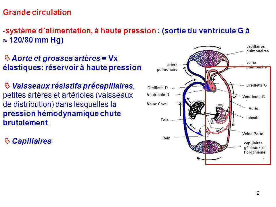 système d'alimentation, à haute pression : (sortie du ventricule G à
