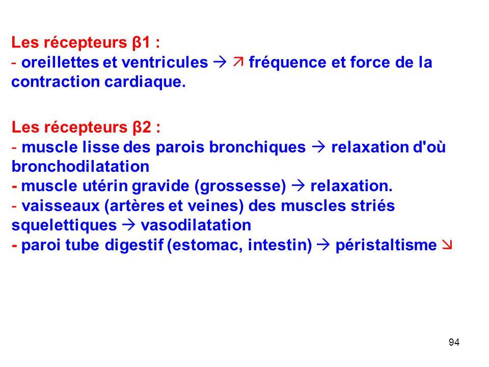 Les récepteurs β1 : oreillettes et ventricules   fréquence et force de la contraction cardiaque. Les récepteurs β2 :