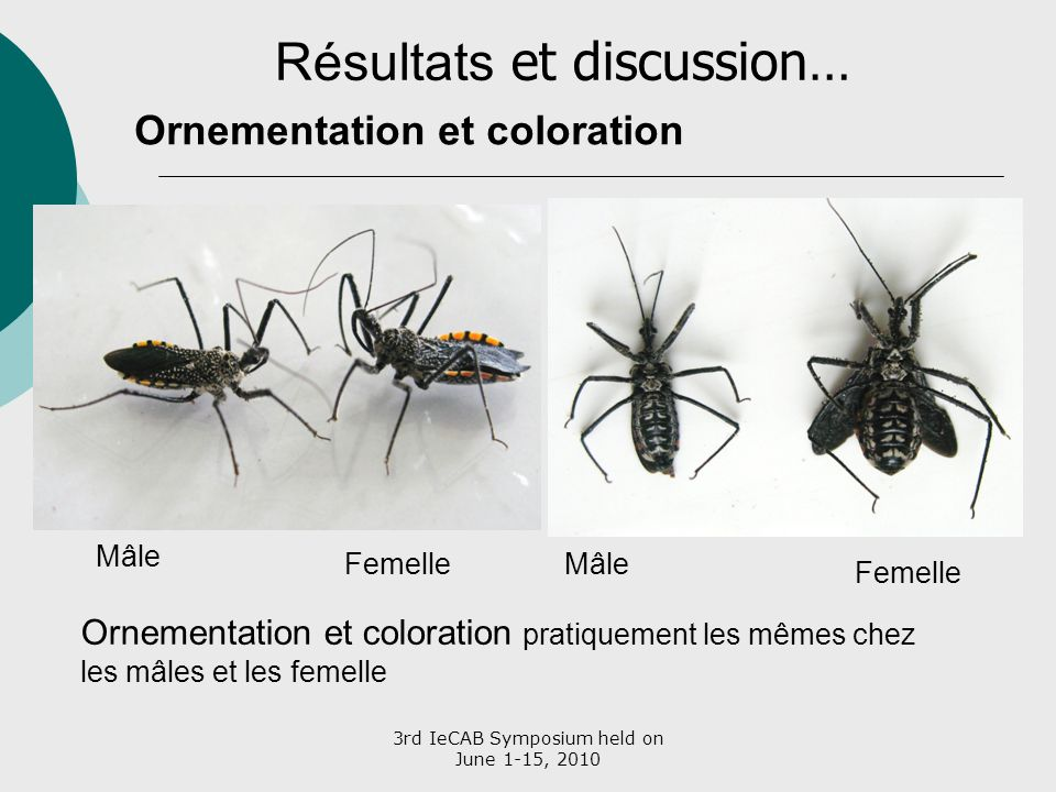 Résultats et discussion…