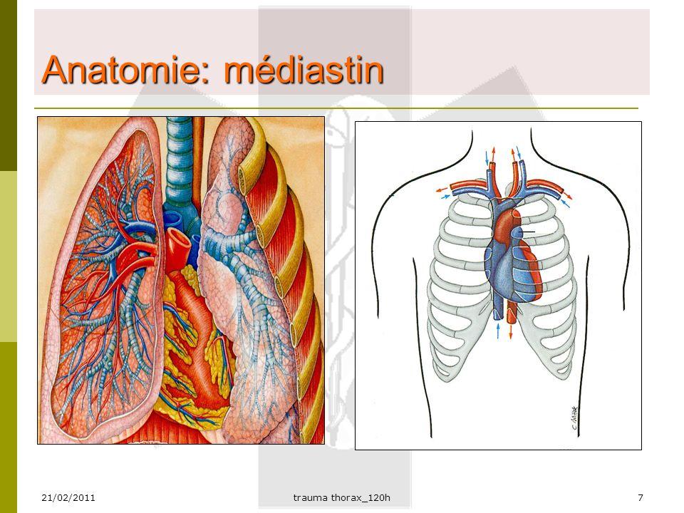 Atemberaubend Anatomie Des Thorax Galerie - Menschliche Anatomie ...