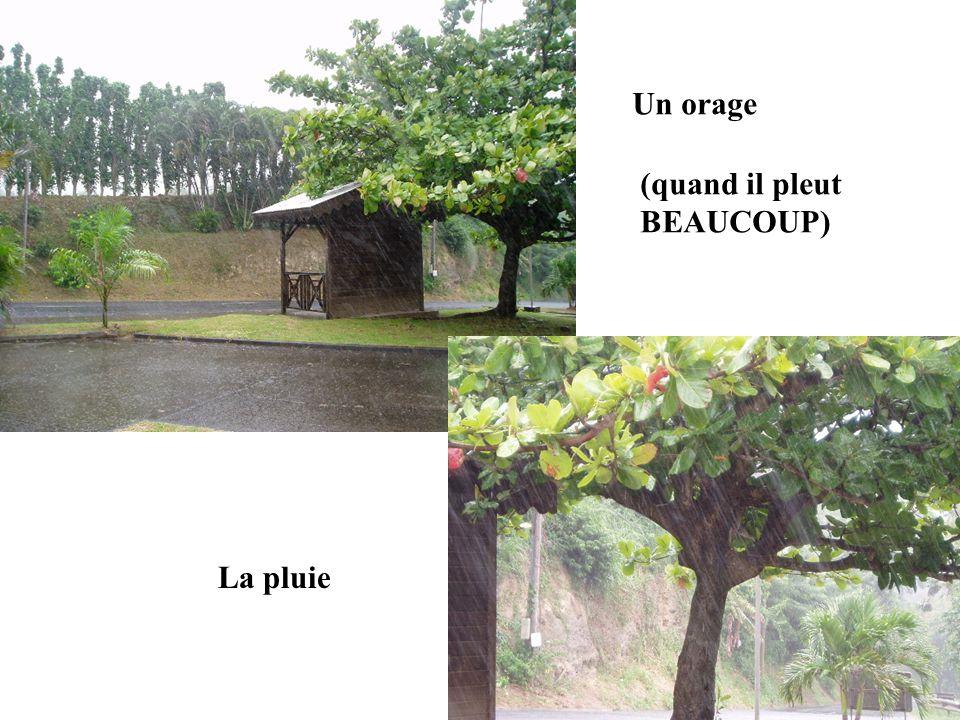 Un orage (quand il pleut BEAUCOUP) La pluie