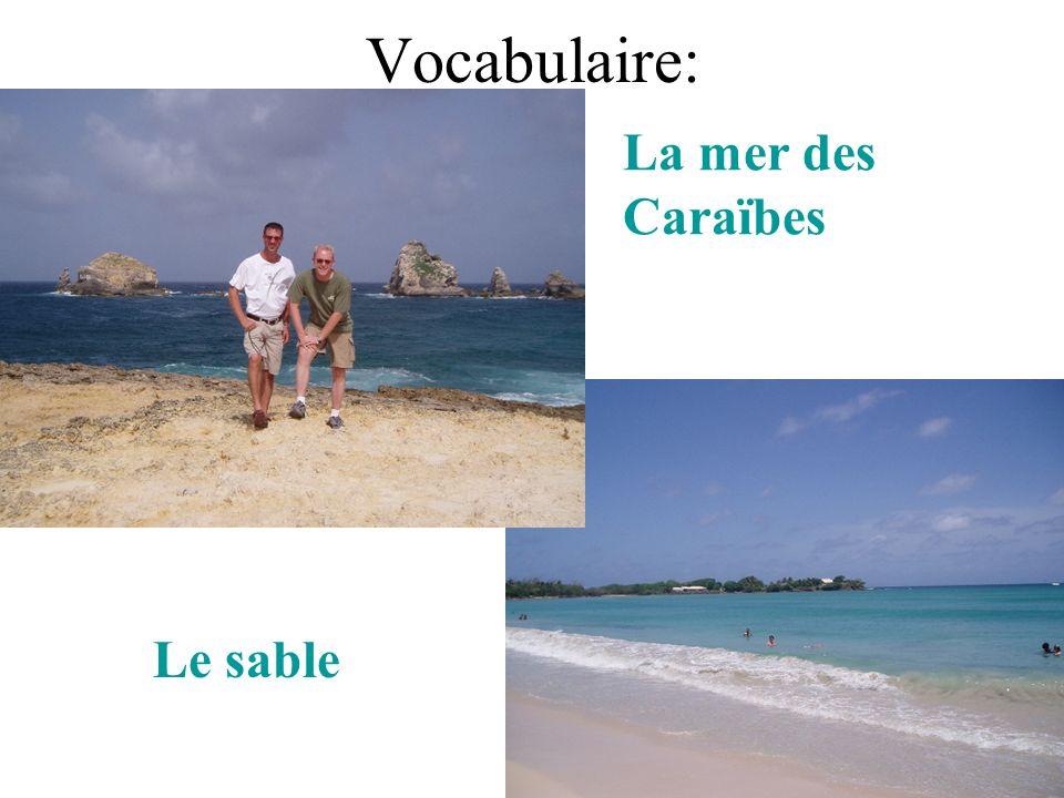 Vocabulaire: La mer des Caraïbes Le sable