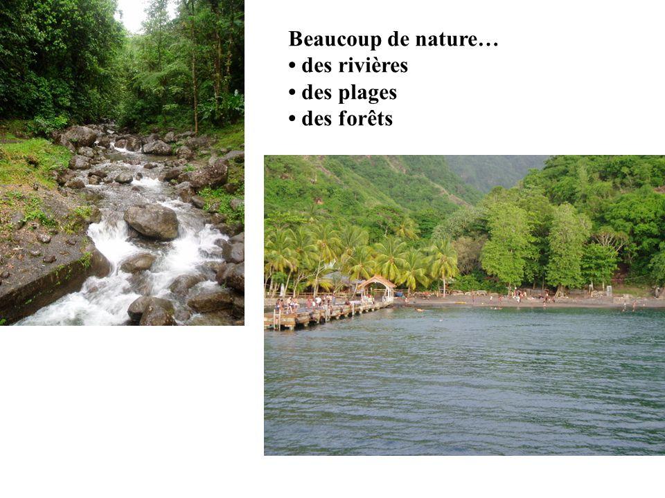 Beaucoup de nature… • des rivières • des plages • des forêts