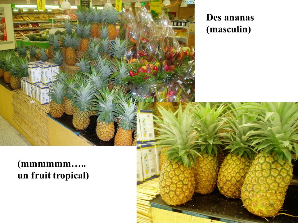 Des ananas (masculin) (mmmmmm….. un fruit tropical)