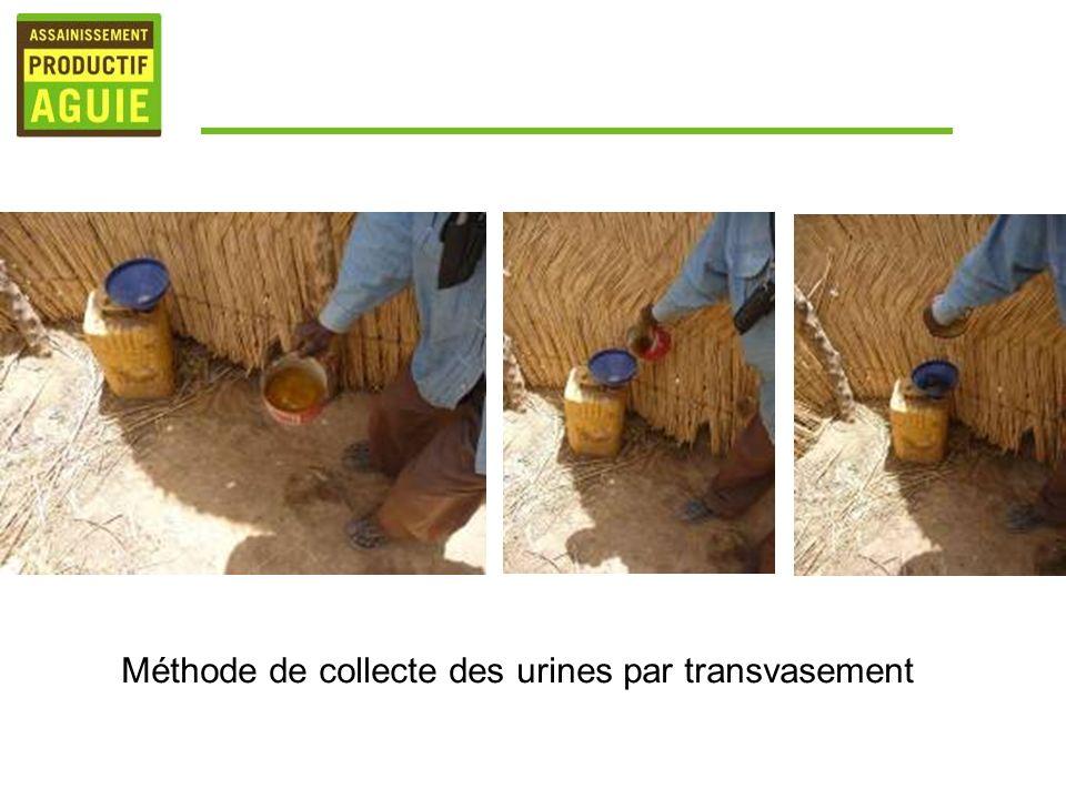 Méthode de collecte des urines par transvasement