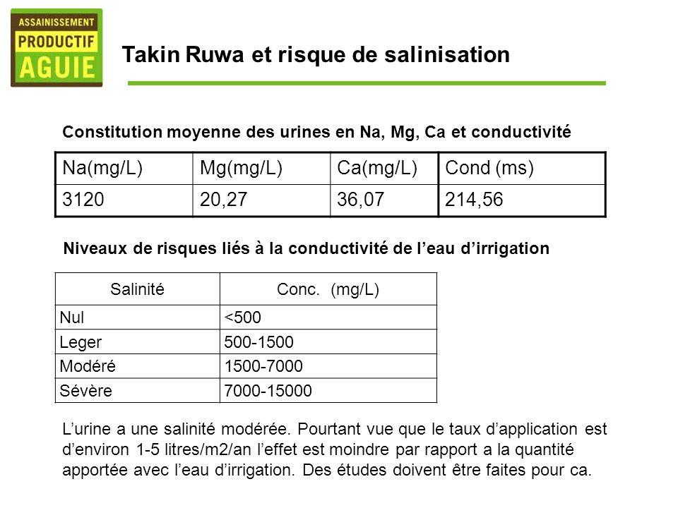 Takin Ruwa et risque de salinisation