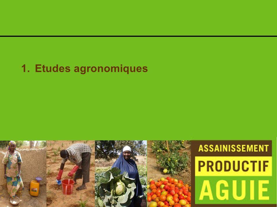 Etudes agronomiques