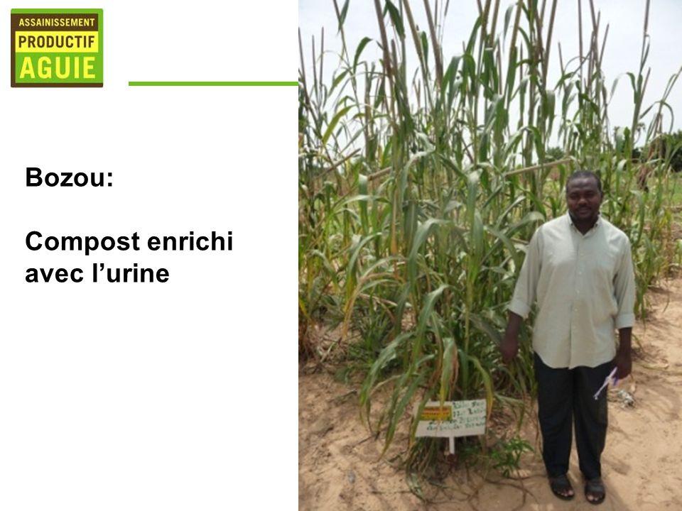 Bozou: Compost enrichi avec l'urine