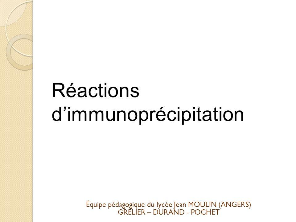 Réactions d'immunoprécipitation