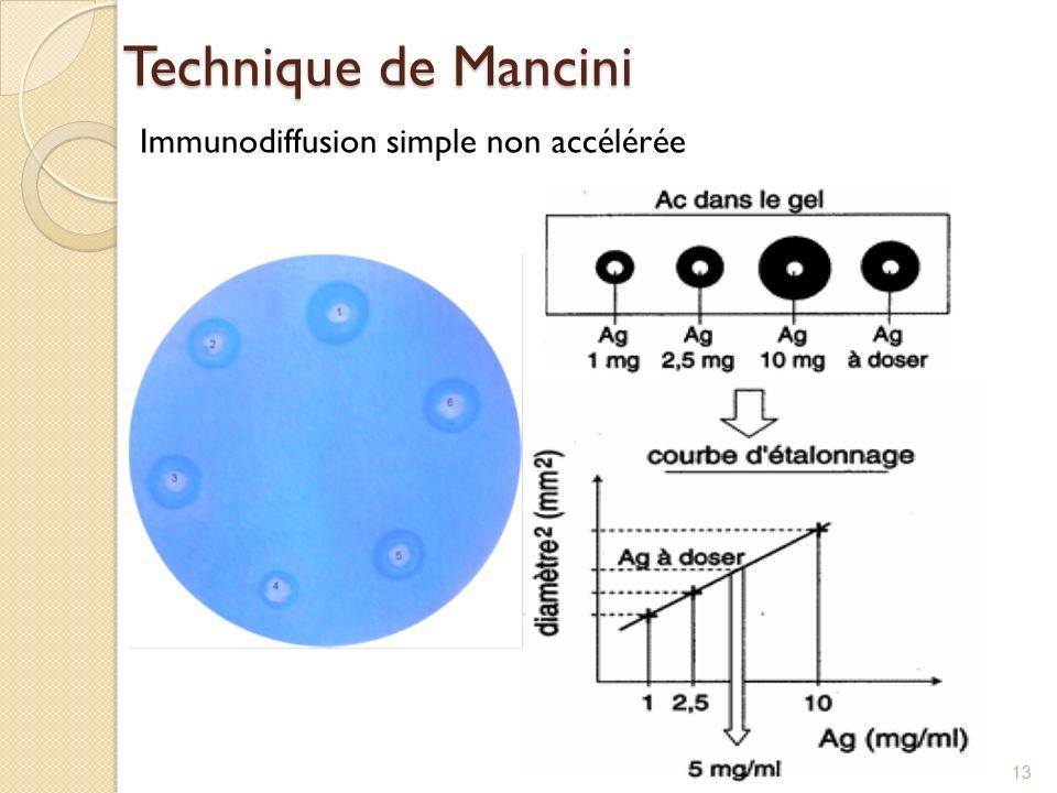 Technique de Mancini Immunodiffusion simple non accélérée