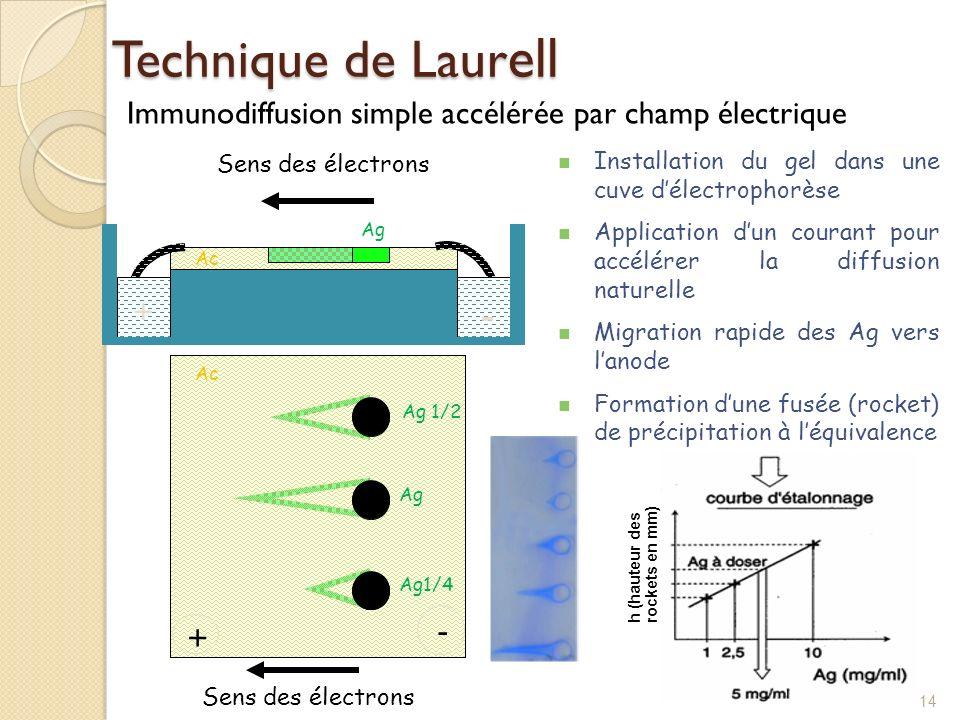 Technique de Laurell Immunodiffusion simple accélérée par champ électrique. Installation du gel dans une cuve d'électrophorèse.