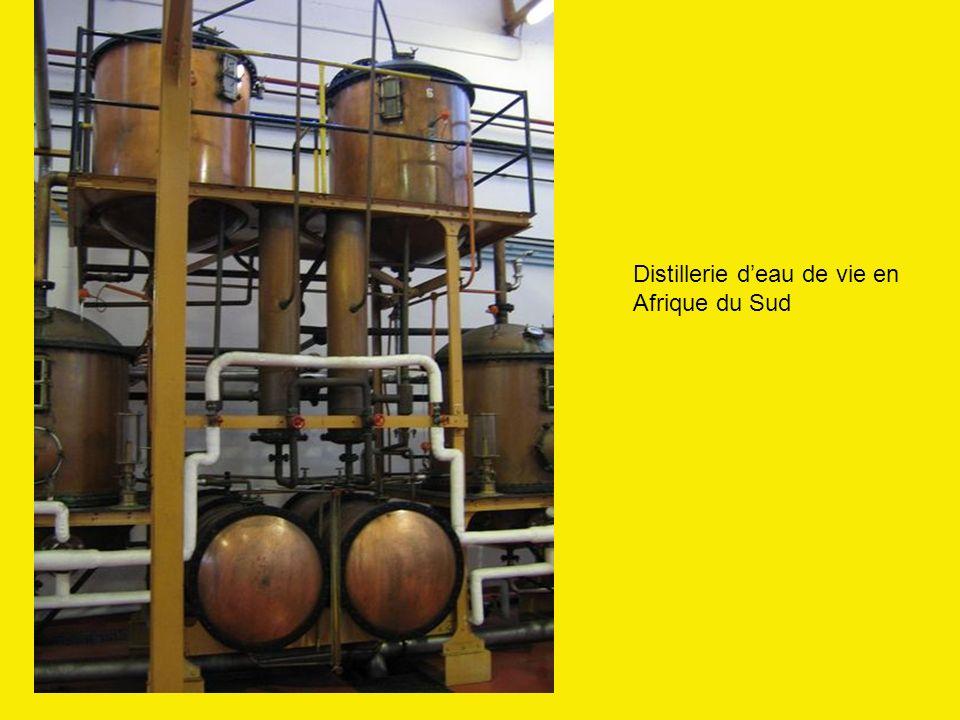 Distillerie d'eau de vie en