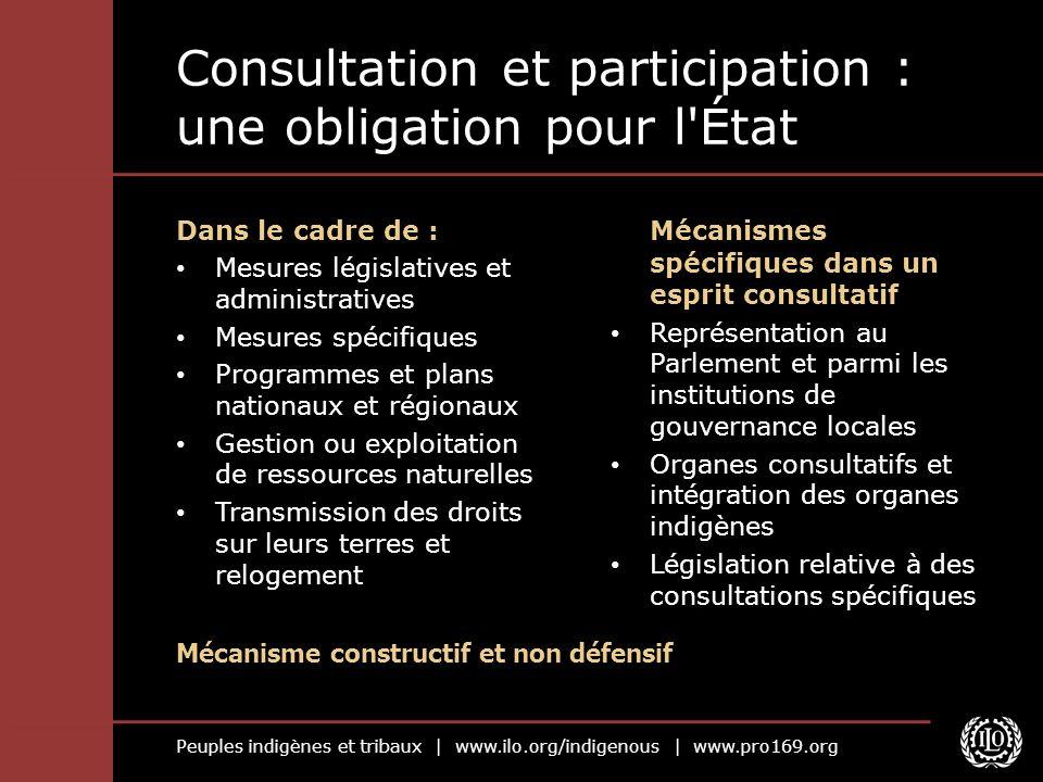 Consultation et participation : une obligation pour l État
