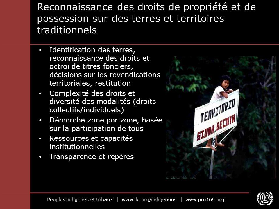 Reconnaissance des droits de propriété et de possession sur des terres et territoires traditionnels