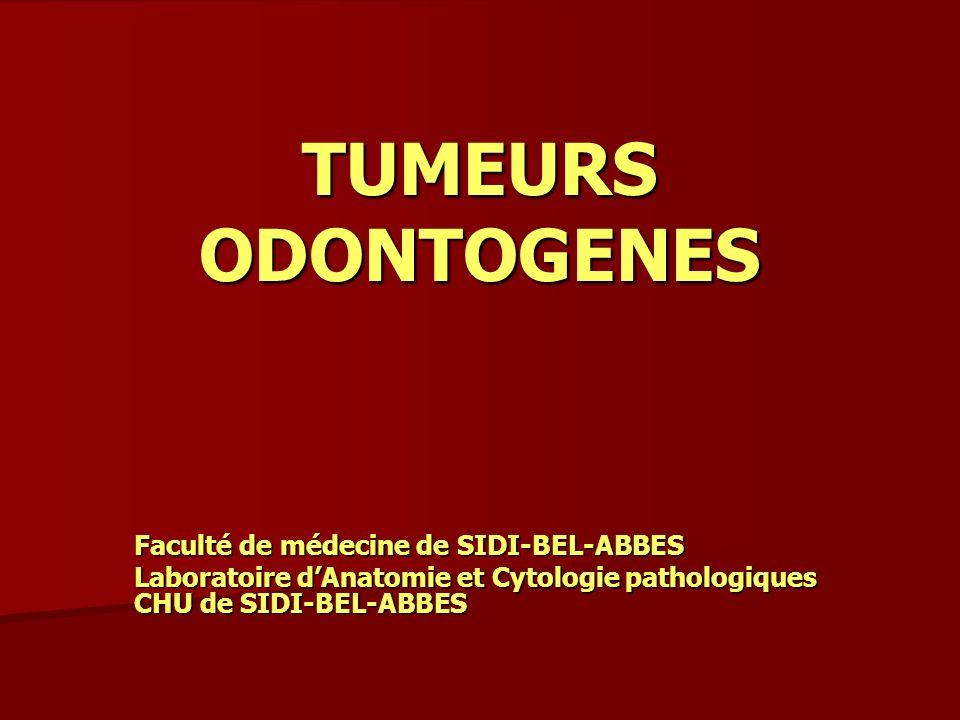 Tumeurs odontogenes facult de m decine de sidi bel abbes - Cabinet d anatomie et cytologie pathologiques ...