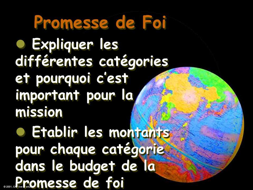 Promesse de Foi Expliquer les différentes catégories et pourquoi c'est important pour la mission.