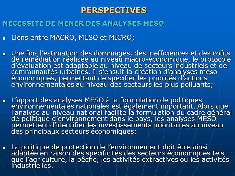 PERSPECTIVES NECESSITE DE MENER DES ANALYSES MESO