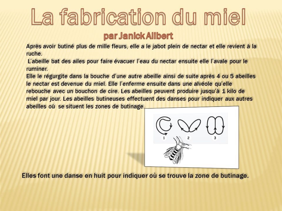 la fabrication du miel par janick alibert ppt video online t l charger. Black Bedroom Furniture Sets. Home Design Ideas