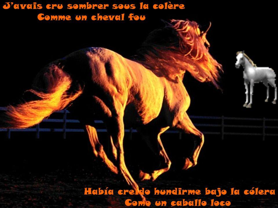 J'avais cru sombrer sous la colère Comme un cheval fou